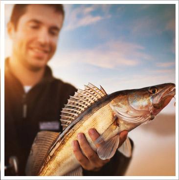 fishing-tours